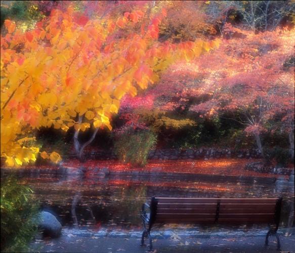 Ashland, Oregon Fall Scene