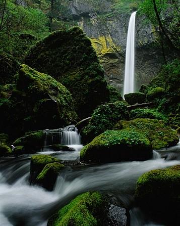 Elowah Falls Springtime