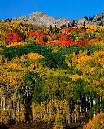 Kebler Pass, Colorado.